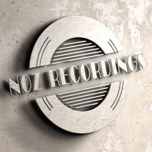 NOZ Recordings's avatar