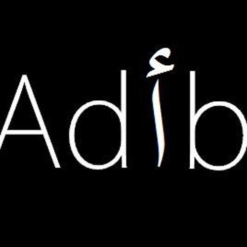 Ad!b's avatar