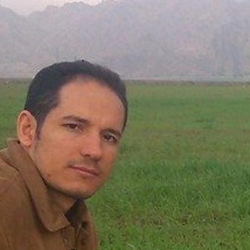 reza dehghani's avatar