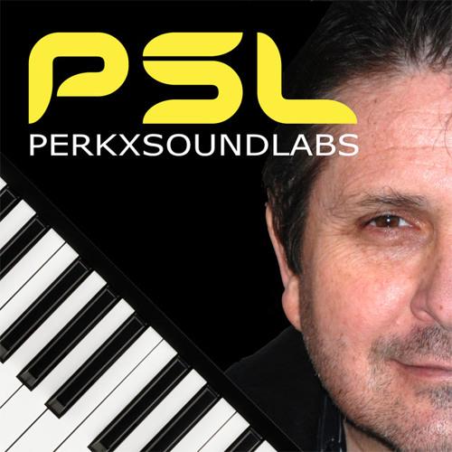 perkXsoundlabs's avatar