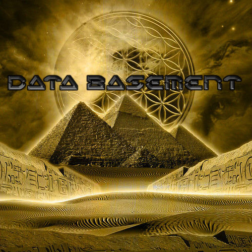∞Data Basement∞'s avatar