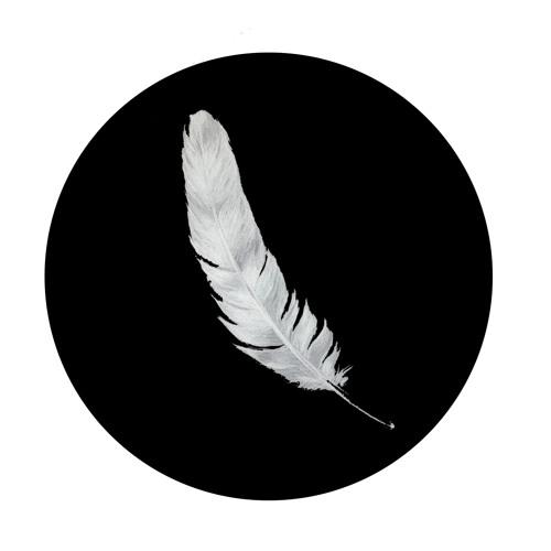 Fallen Feathers's avatar