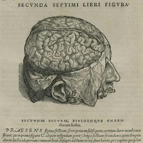 Medicine Head's avatar