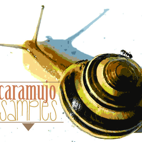 Caramujo Samples's avatar