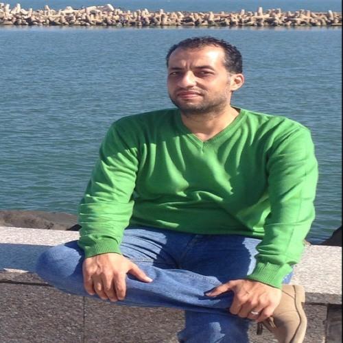 Mohammed Mahmoud Hoseny's avatar