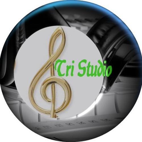 Tri Studio's avatar