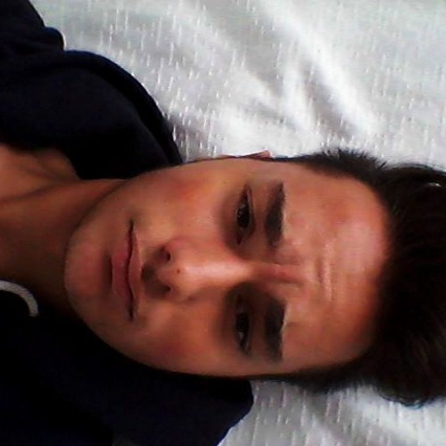 Riccardo.Castelli's avatar
