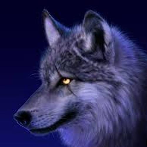 Shadow Wolf Dawn's avatar