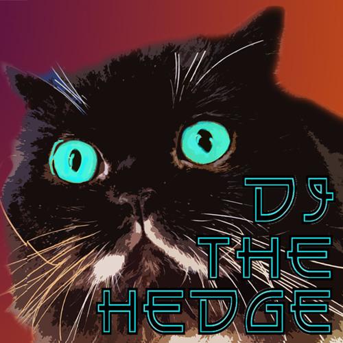 Dj TheHedge's avatar