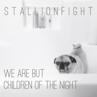 Conversation 16 by The National (Stallionfight Remix)