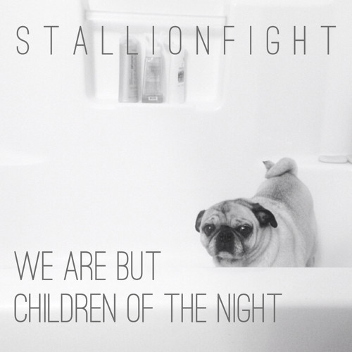 Get Better by Mates of State (Stallionfight Remix)