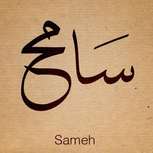 Sameh Abd El-Baset's avatar