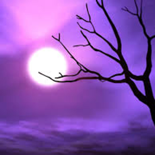 purplepeopleD's avatar