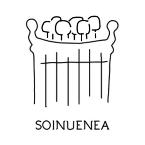 Soinuenea Fundazioa's avatar