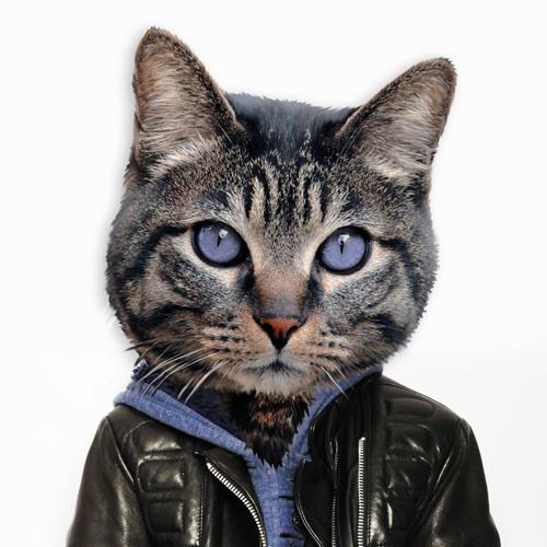 Ada Lion's avatar