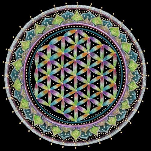 Space Lichens's avatar