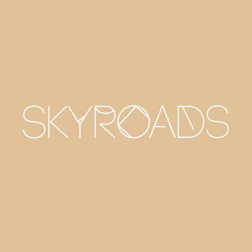 SKYROADS's avatar