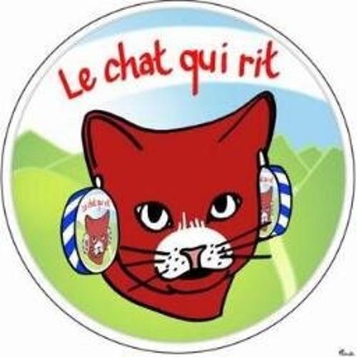 Michel Lehutin's avatar