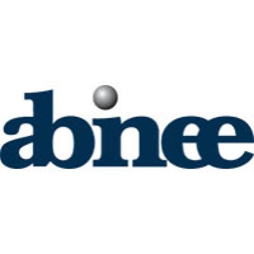 Abinee's avatar