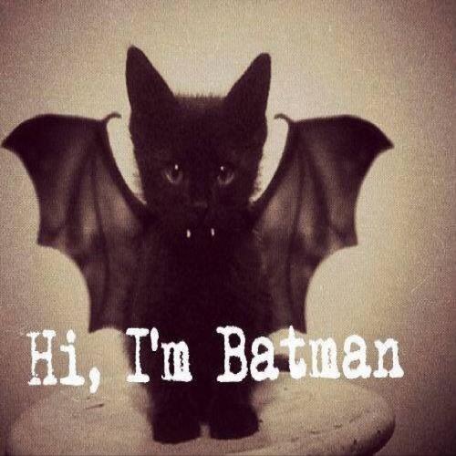 The prophet (batman)'s avatar