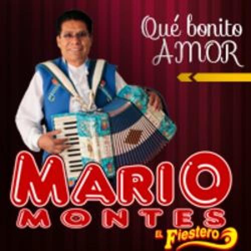 Mario Montes's avatar