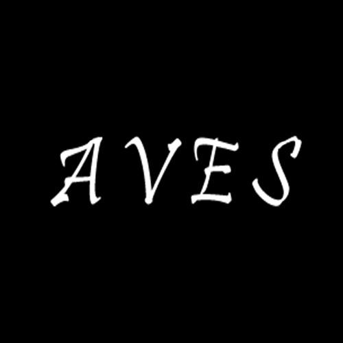 Aves music's avatar