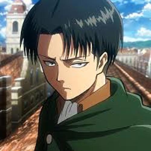 Captain Levi's avatar