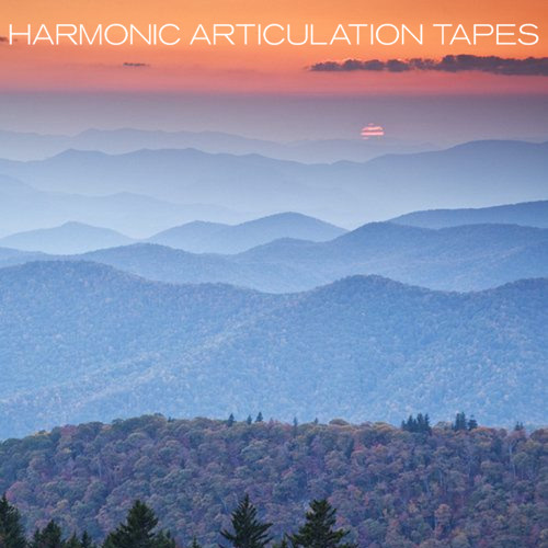 HarmonicArticulationTapes's avatar