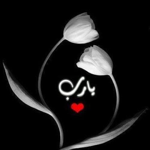 Eman Eisa 1's avatar