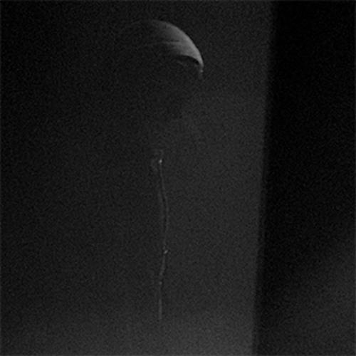 Human Rays's avatar