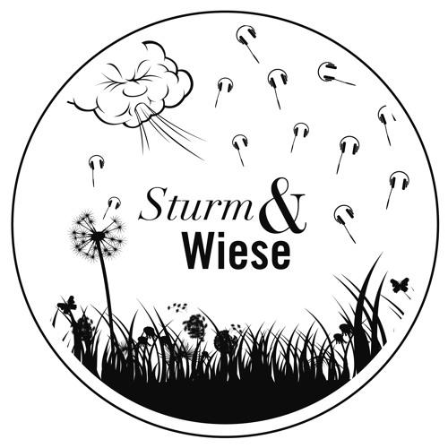 Sturm & Wiese's avatar