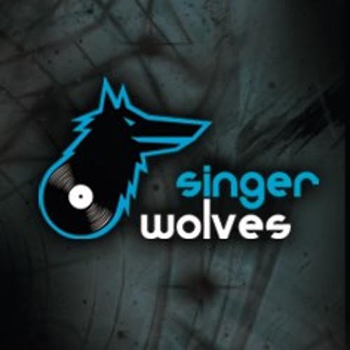 Singer Wolves music's avatar