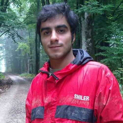 Behnam Amanizad's avatar