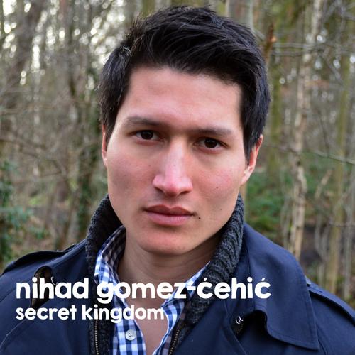 nihadgomezcehic's avatar