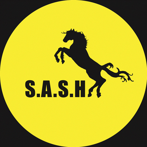 S.A.S.H's avatar