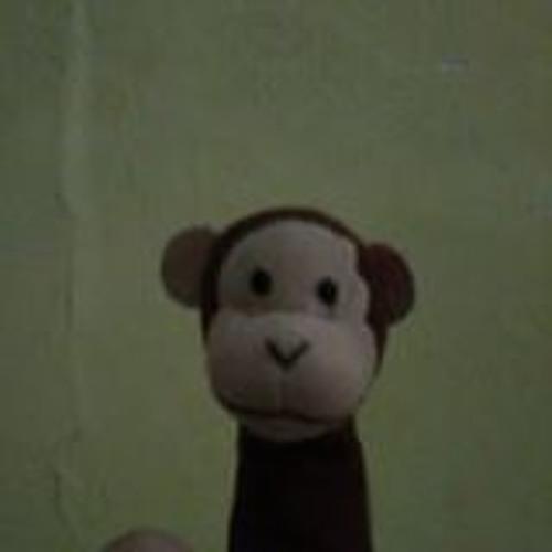 Muhammad Riza Farhandi's avatar