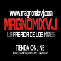 Magnomix Vj