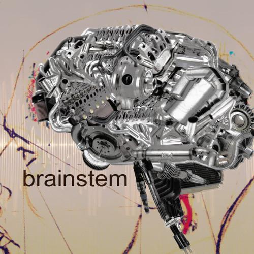 brainstem(activity)'s avatar