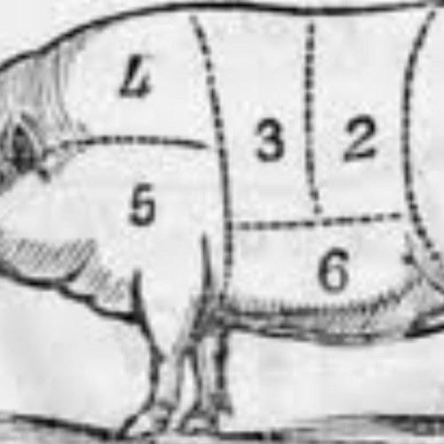 baconpaul's avatar