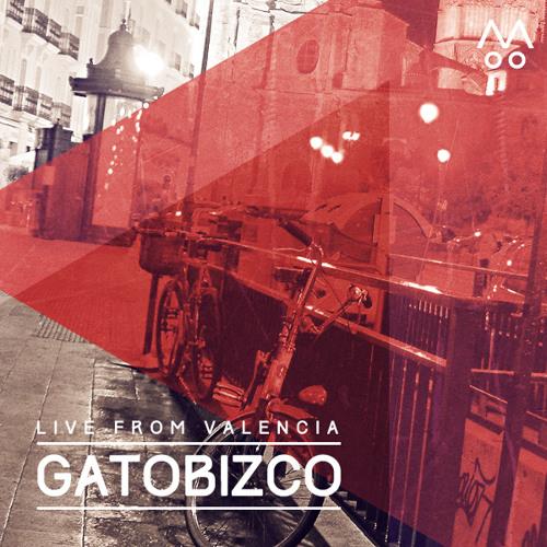 GatoBizco's avatar