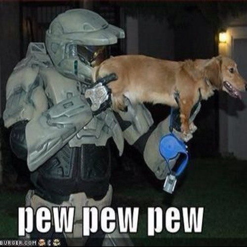 pew pew man's avatar