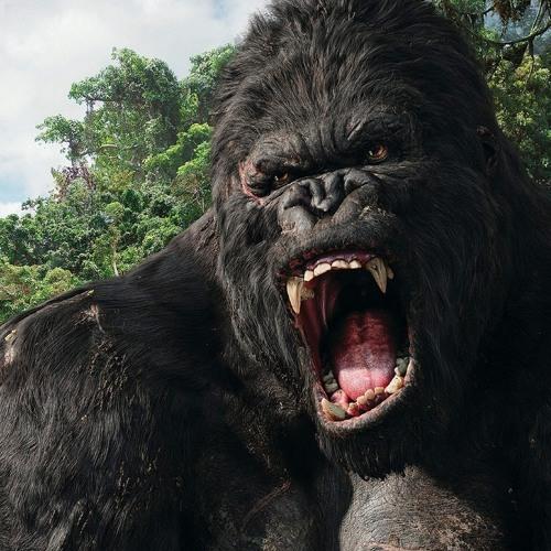 the monkey man's avatar