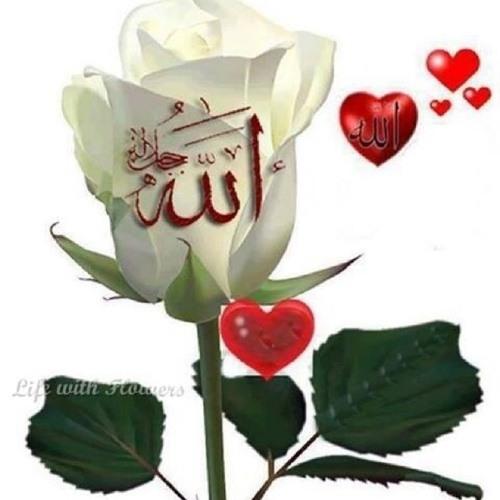 user414557829's avatar