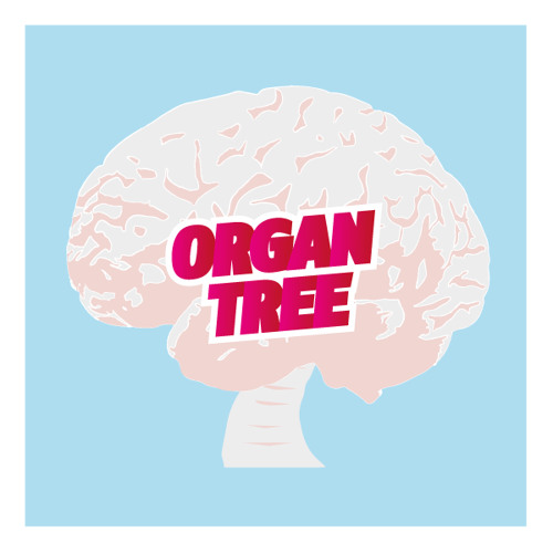 ORGAN TREE's avatar