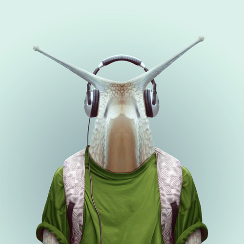 jeff_B's avatar