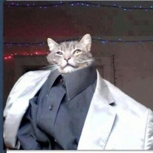 rainbow_cat_man's avatar