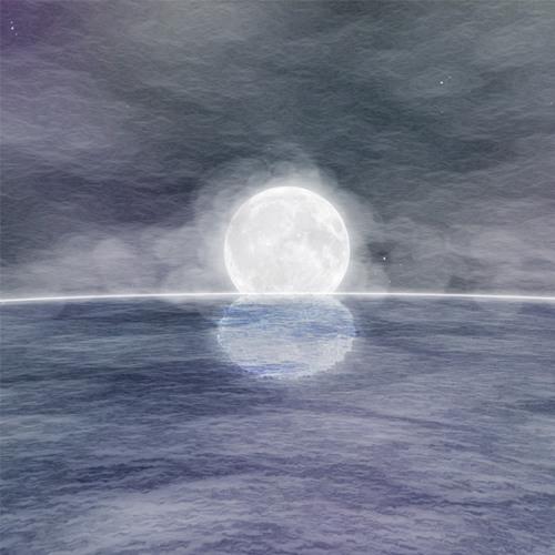 supertetra's avatar