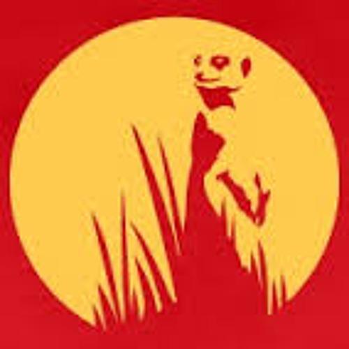 Vivi Zekid's avatar