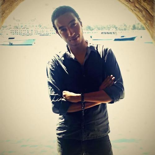 Ali Elhalawany's avatar