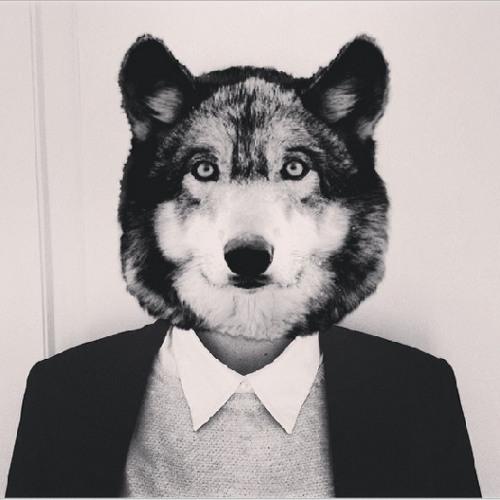 FloydP's avatar